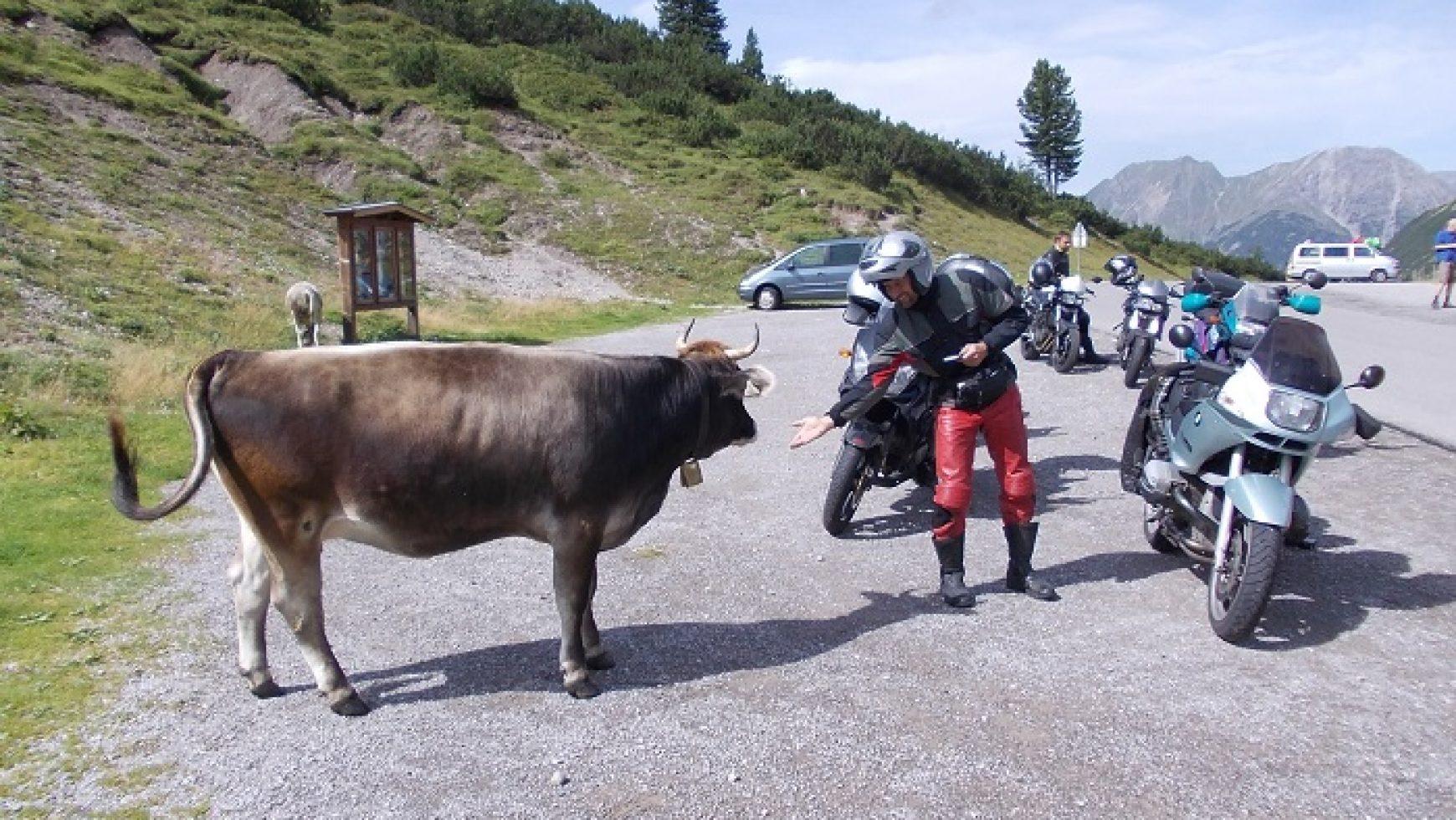 Geführte Motorrad-Tour – Was soll das?
